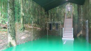 designgulve i skov